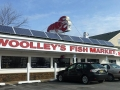 woolleys-fish-market